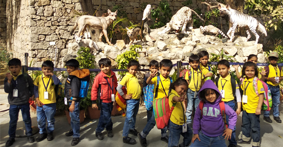 Picnic to Kankaria Zoo - PrePrimary